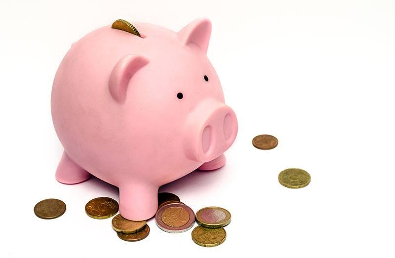 Tirelire en forme de cochon, à combien s'élève la rémunération en contrat de professionnalisation